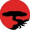 Школа боевого взаимодействия Шидокан