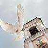 Христорождественский храм с. Заозерье