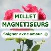 MILLET MAGNETISEURS