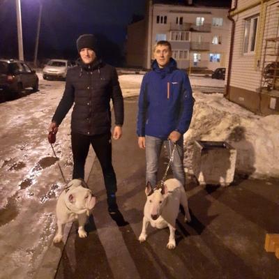 Артём Смирнов, Ярославль