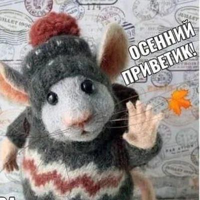 Вера Новикова, Москва