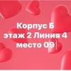 Футболки женский садоводе ТЦкБ 2-4-09