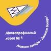 Многопрофильный Лицей №1 г. Магнитогорска
