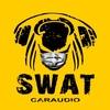 SWAT Car Audio