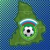 Федерация футбола Свердловской области