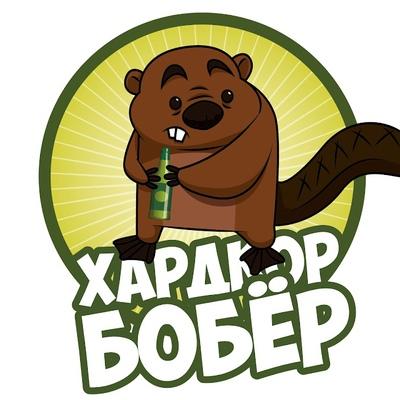 Александр Бобров, Курган
