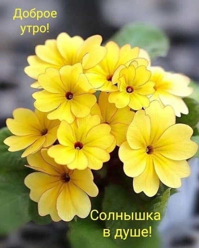 Людмила Волкова, Пермь